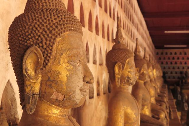 koriander-y-manta_Vientiane_VatSisaketBuddha