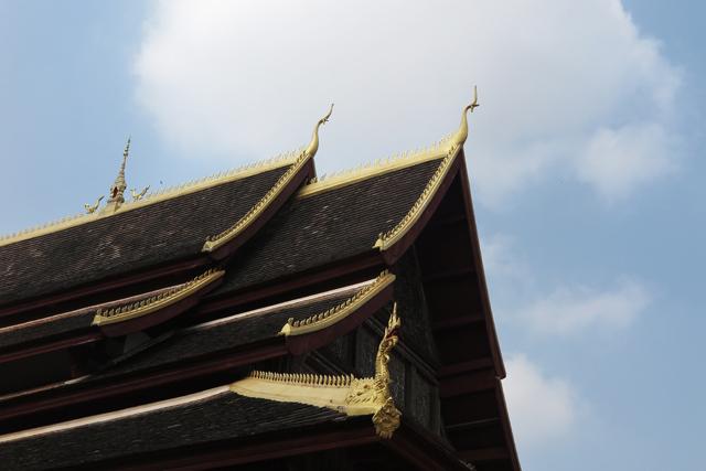 koriander-y-manta_Vientiane_VatSisaketNaga