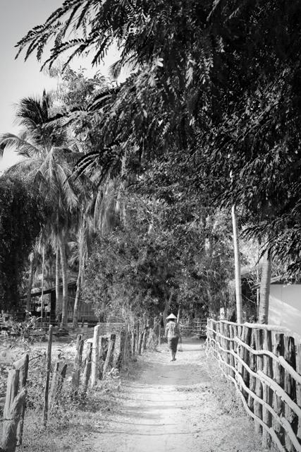 Camino en la isla Don Det. Si Phan Don, Laos.