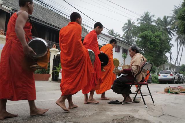 Monjes durante la entrega de limosnas, Luang Prabang, Laos