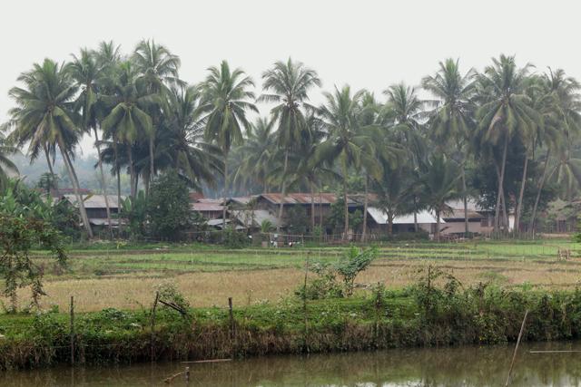 Aldea cercana a Luang Prabang, Laos.