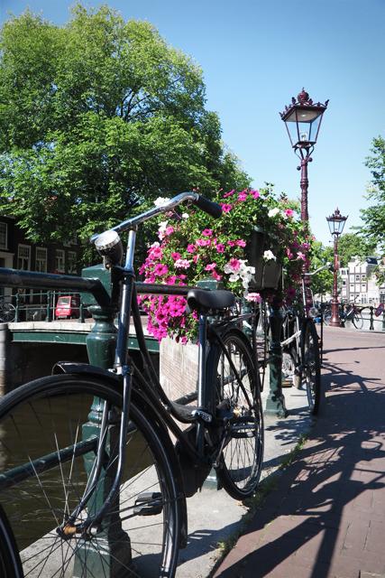 koriander-y-manta_amsterdam_bikes