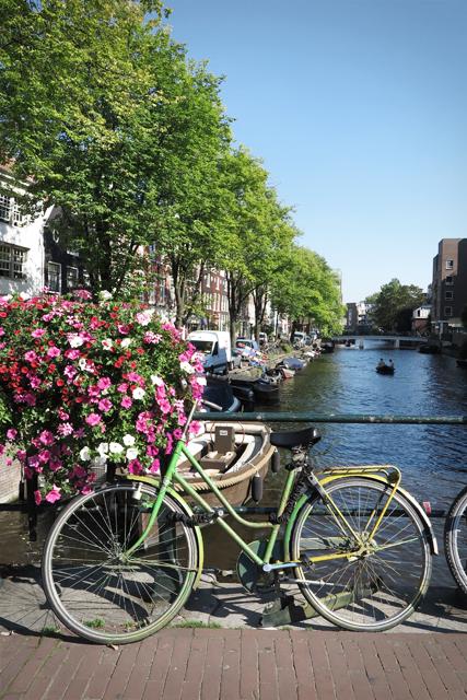 koriander-y-manta_amsterdam_bridges